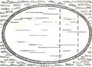 Овальная форма бассейна