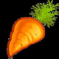 morkov-zagot