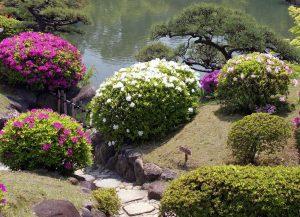 Классический японский сад на www.ru-dachniki.ru